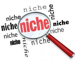 How to identify your niche?